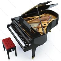 Beginners Piano Lessons - $10/half-hour (Pre-Paid Rates)