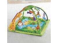 Fisher Price Rainforest playmat