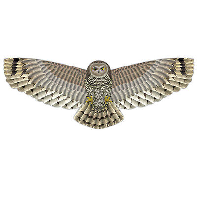 X-Kites Birds of Prey Delux Nylon Kites - 48 inch Owl