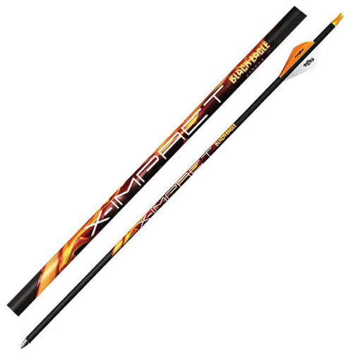 Black Eagle X-Impact Arrows