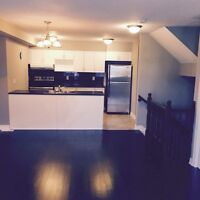 Gorgeous 2 bdrm Minto terrace home in Orleans