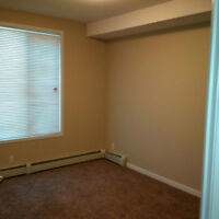 One bedroom available for rent