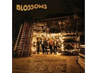Blossoms Concert - O2 ABC Glasgow - 1x Ticket - Saturday 1st October