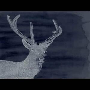 Modern canvas art Bronte Eastern Suburbs Preview