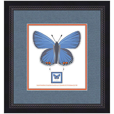 USPS NEW EASTERN TAILED BLUE BUTTERFLY FRAMED ART
