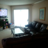 FULLY FURNISHED EXECUTIVE APARTMENT DOWNTOWN. JULY 1st