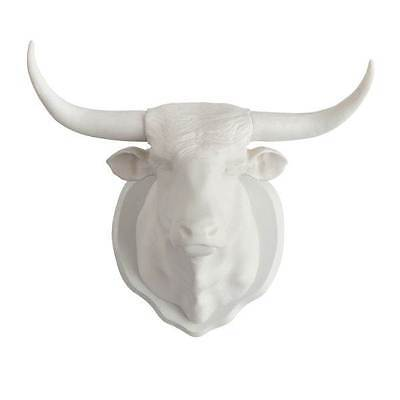 Taxidermy White Longhorn Bull Magnet & Wall Hook Mount Coat Hanger Hunting By on Rummage