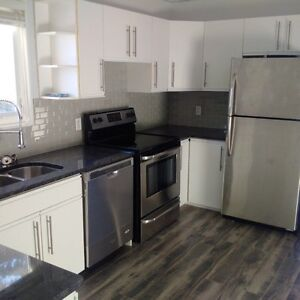 Completely renovated 2 bedroom for rent