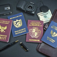 """Passport"" style blank notebook - cool gift!"