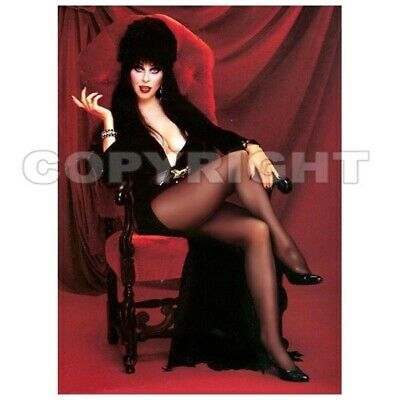 Pin Up Girl Halloween (Fridge Magnet Elvira Hot Legs! witch Halloween horror pin-up girl art)