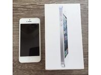 iPhone 5, White, 32GB (excellent condition!)