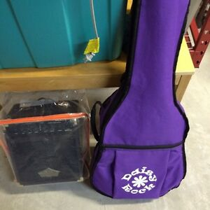 Daisy Rock electric acoustic and amplifier $450