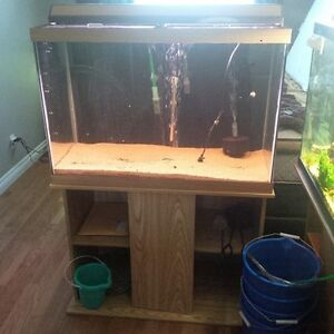 65 Gallon Aquarium, stand, lid, light