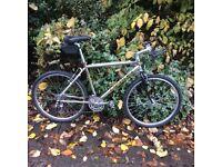 Merlin malt bike