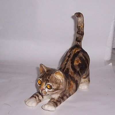 Winstanley Cat Kitten Size 2 Tabby and White Stretching