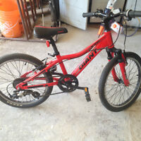 "GIANT mountain bike, 20"""