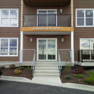 LARGE APARTMENT CENTRAL DARTMOUTH