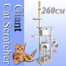 Warehouse pickup 260cm Giant Cat tree house cat scratcher Riverwood Canterbury Area Preview