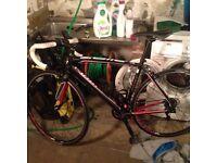 Specialized Allez Sport 54cm Road Bike + upgrades NEEDS TO GO ASAP! Manchester/ Glossop
