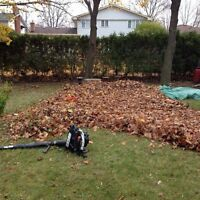 Yard cleanups*Great service/rates*Leaf removal