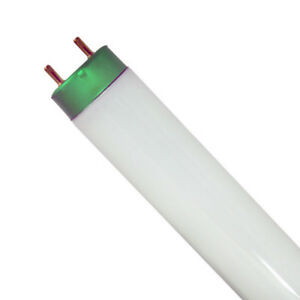 "Lot of 56 of Fluorescent Tubes - 48"" T8"