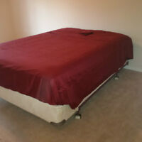 Large All Inclusive Room for Rent - Kanata North