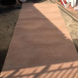 Mid Brown Stainfree twist pile carpet