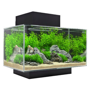 fluval Fish Tank London Ontario image 1