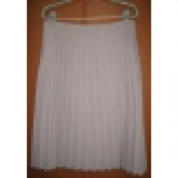 Brand new pleated skirt