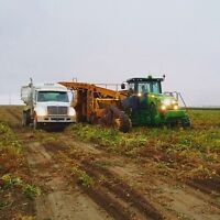 Looking for class 3 driver for Automatic potato truck