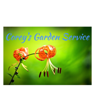 Lawn mowing, hedging, tree lopping, rubbish removal and yardclean
