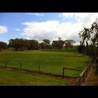Brookton half-acre block of land serviced ready to build