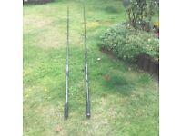 Carp rods
