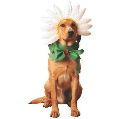 Dogs Daisy Costume (Daisy Hunde Kostüm)