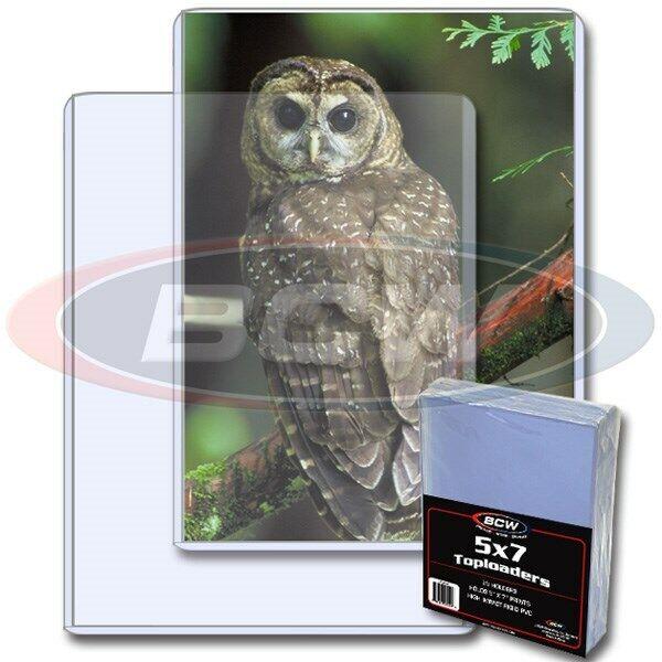 25 BCW 5 x 7 Rigid Plastic Photo Topload Holders 5x7 hard protectors toploaders