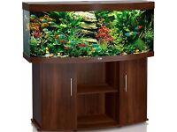 5ft Jewel fish tank