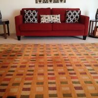 Beautiful thick wool rug