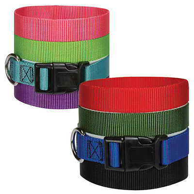 - Guardian Gear Nylon Dog Collar Solid Color Pet 8COLORS 4SIZES Collars adjustable