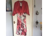 Elegant Dress and Jacket