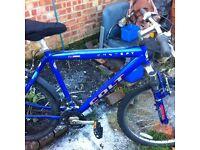 Colt bike