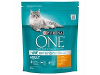 Purina ONE Adult Chicken & Whole Grains Dry Cat Food - Bifensis