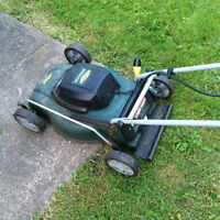 electric lawnmovers