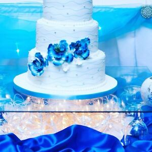WEDDING DECOR & ALL OCCASIONS! 2017 Booking going on now! Kitchener / Waterloo Kitchener Area image 3