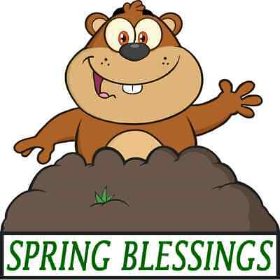 30 Custom Spring Blessings Groundhog Personalized Address Labels