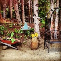 RV pad for rent on one acre in Kitimat