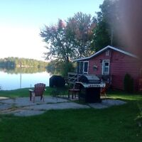 Family Reunion rent all 3 cottages on Lyndhurst Lake