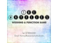 MUSICIANS WANTED - Wedding & Function Band - Lanarkshire + Glasgow