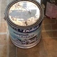 Dulux weather guard primer