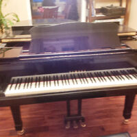 Yamaha Grand Piano C3 with bench