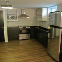 East Kildonan Newly Completed Modern 1 Bedroom Basement  Suite